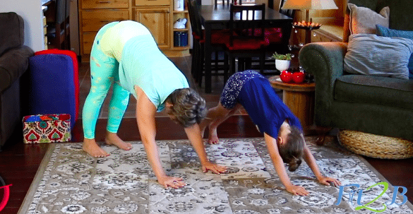 Animal Acrobats home video workout for kids - fit2b.com