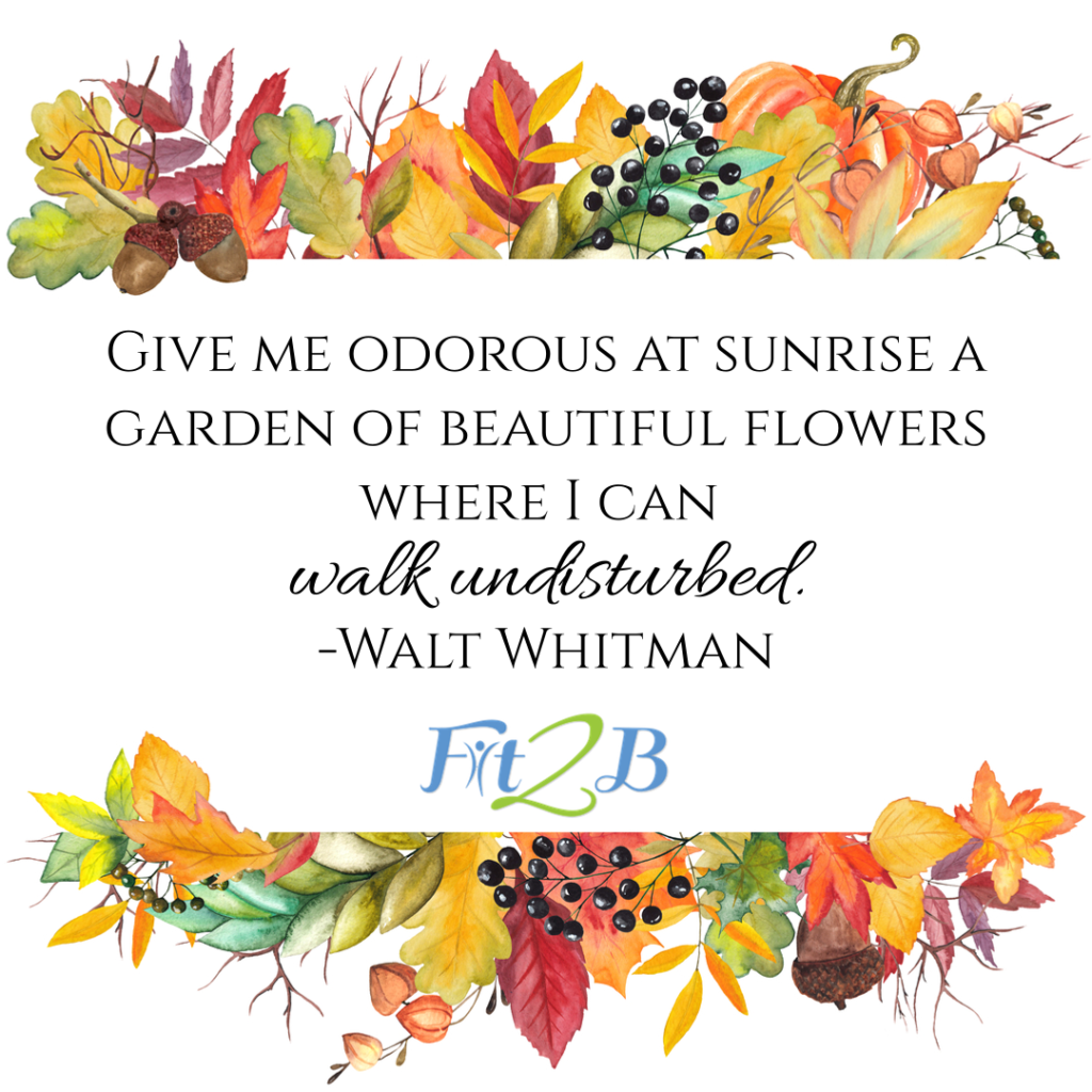 #walkthankful – Join Our November 30-Day Walking Challenge - Fit2B.com
