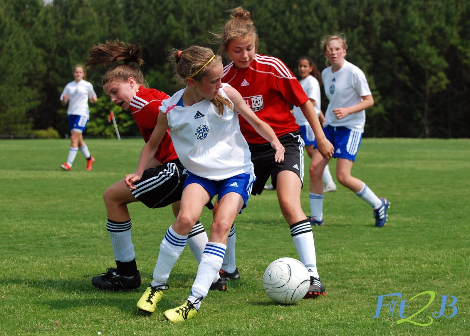 If You're Raising a Young Female Athlete, You Need to Know This! - Fit2B.com