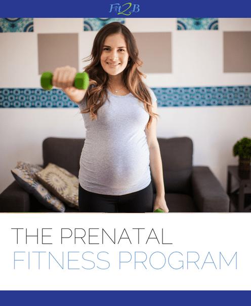 The Prenatal Fitness Program - Fit2B.com