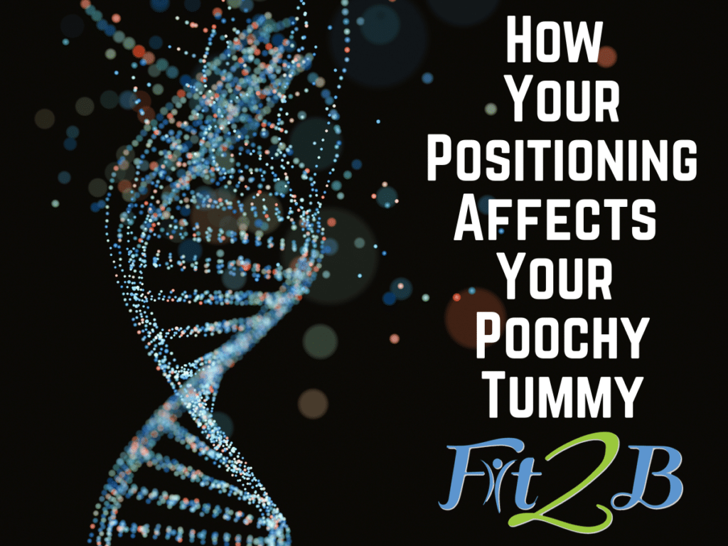 How Your Positioning Affects Your Poochy Tummy - Fit2B.com
