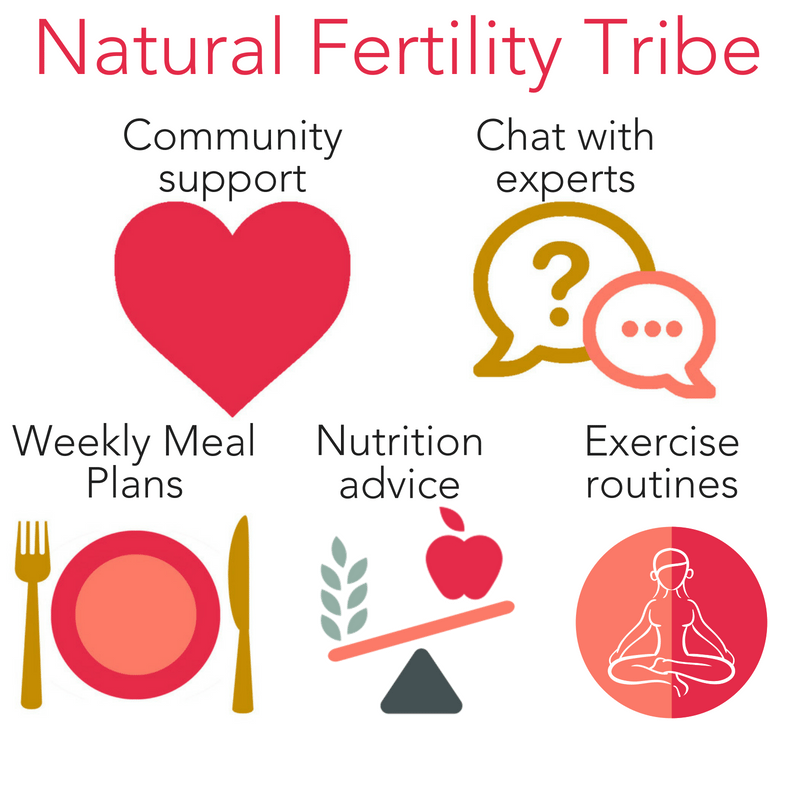 The Natural Fertility Tribe has weekly meal plans, community support, specialized exercise routines, and you can chat with the experts!