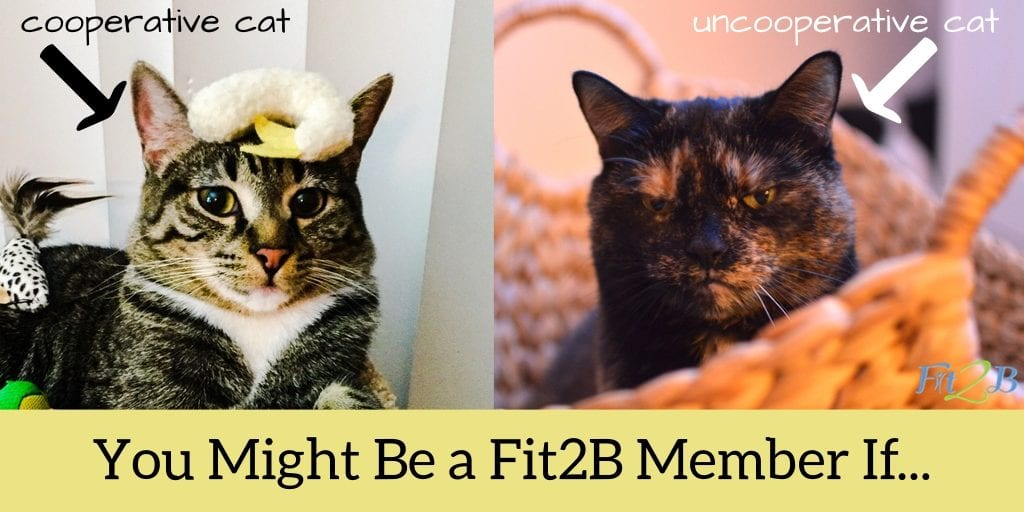 You Might Be a Fit2B Member If... - Fit2B.com