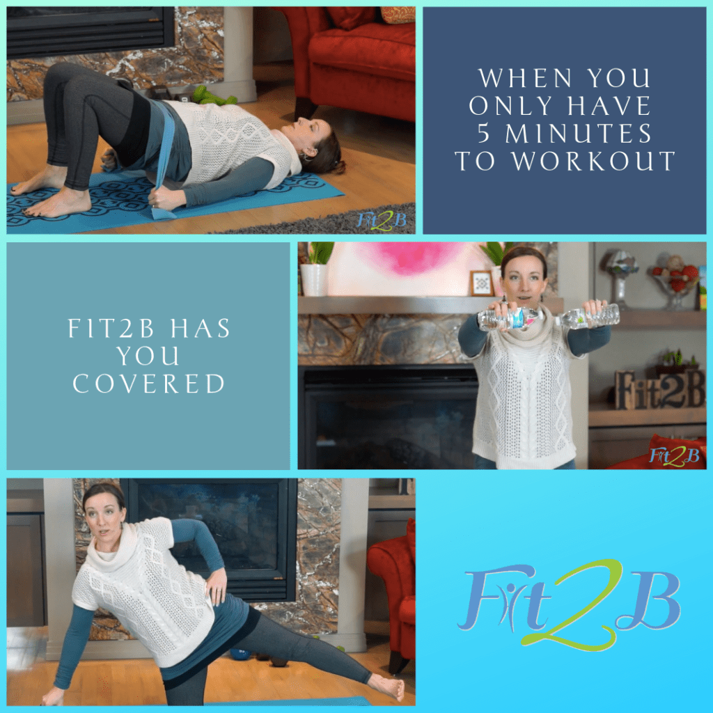5 Minutes With Fit2B - Fit2B.com - Busy Mom, do you know you need a good arm workout / leg workout, but how? When you only have 5 min for your home workout, we got you covered with diastasis friendly and tummy safe routines. Check these out! - #fitnessjourney #fitnessmotivation #getfit #fitmomlife #bodypositive #fitmom #thefitlife #strongnotskinny #homefitness #abworkout #homeworkouts_4u #healthylife #healthylifestyle #fitnessroutine #coreworkouts #diastasisrecti #diastasis #diastasisrecovery #fit2b #bunsofsteel