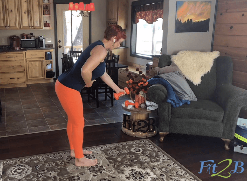 Color Series: Orange Home Exercise Workouts - Fit2B.com - Orange Obliques Workout - The Color Series