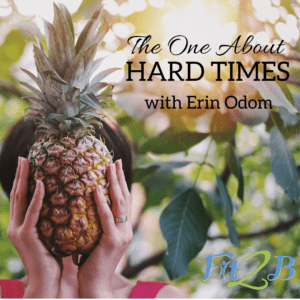 """S2:10 The One About HARD TIMES - Fit2B.com - Fit2B knows busy moms wonder, """"Are there diastasis recti exercises available that will help me even if I have adrenal fatigue? Is there an exercise program that will actually help me with my fitness motivation?"""" Listen in as we discuss on this candid podcast how Fit2B and Trim Healthy Mama helped our guest strategically return to fitness and walk through a hard time she might not have been healthy enough to get through otherwise. #fit2b #diastasis #diastasisrectiexercises #homefitness #healthy"""