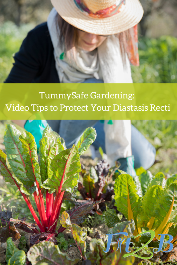 TummySafe Gardening: Video Tips to Protect Your Diastasis Recti - Fit2B.com - Fit2B wants women safe as they explore garnering for beginners. That's why Beth, our fitness and core expert who specializes in tummy safe diastasic recti exercises, put together this blog with a short video to help you avoid back pain. You know your gardening will be great as an abs workout when you learn how to breathe properly while engaging your core and practice a deep squat with proper posture. Click through to learn more! #gardeningforbeginners #diastasisrecti #fit2b #absworkout #fitness
